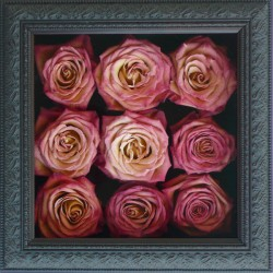 Simply Roses Pavé Design Black Imperial